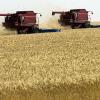 Прибиране и съхранение на зърното