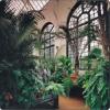 Екзотична градина