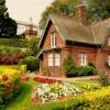 Полезни съвети за перфектната градина