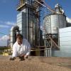 Особености в разтежа и развитието на ориза