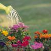 Как да се справим с недостига на вода – част 1