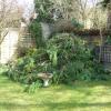 Топ задачи за пролетната градина