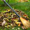 Почистете занемарения двор лесно и бързо