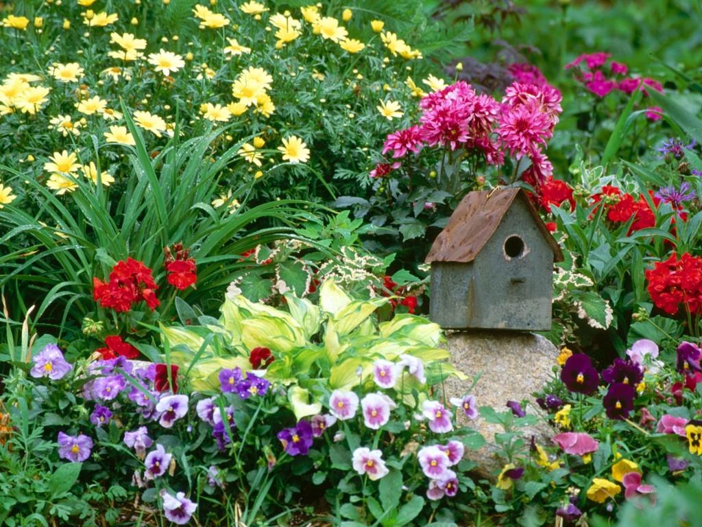 Грешки в градината